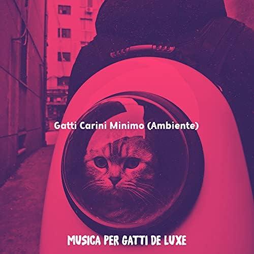 Musica per Gatti De Luxe