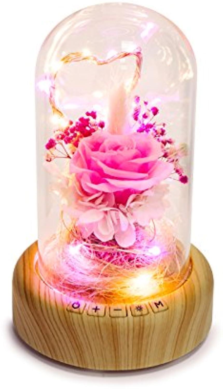 Night light- Wunsch-Streamer-Flasche Nachtlicht kreative romantische Valentinstag Geschenk energiesparende Blautooth Musik Audio Schreibtischlampe