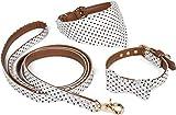 Puccybell Retro Punkte Hundehalsband mit Tuch, Schleife und Hundeleine (1,2m), 3-teiliges Set aus Bandana und Fliege Halsband mit Leine für kleine und mittelgroße Hunde HLS006 (M, Weiß)
