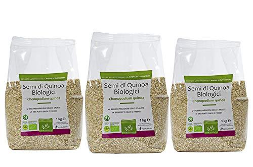 Semillas de Quinoa Biologica - Envasado...