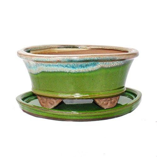 Bonsai-Schale mit Unterteller Gr. 2 - Sonderglasur mit edlem Farbverlauf-Effekt - oval 09 - hellgrün-beige - L 16cm - B 12cm - H7,3cm