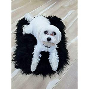 NA Sheepskin Pet Bed Mat 100% Sheepskin Deluxe Dog Crate Pad Ultra Soft Durable Self Warming Kennel Mattress for Dogs and Cats