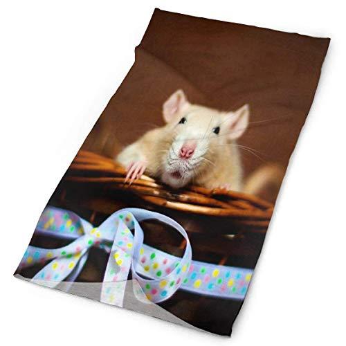 Nother Diadema de ratón al aire libre bufanda máscara cuello polaina cabeza envoltura banda para el sudor