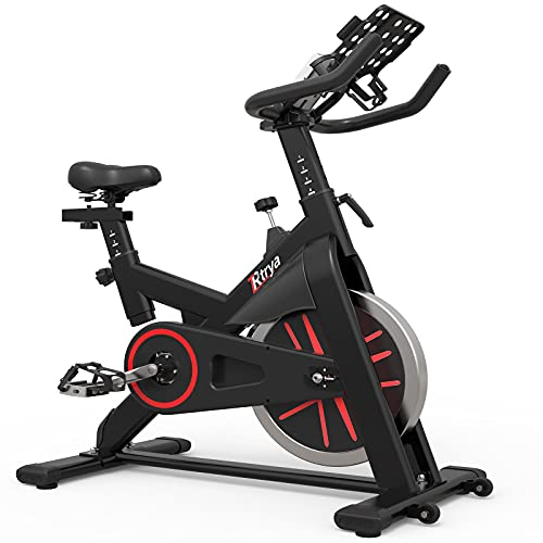 LABODI Indoor Cycling Bike Stationary, Exercise Bike for Home Cardio Gym, Workout Bike with 35 Lbs...