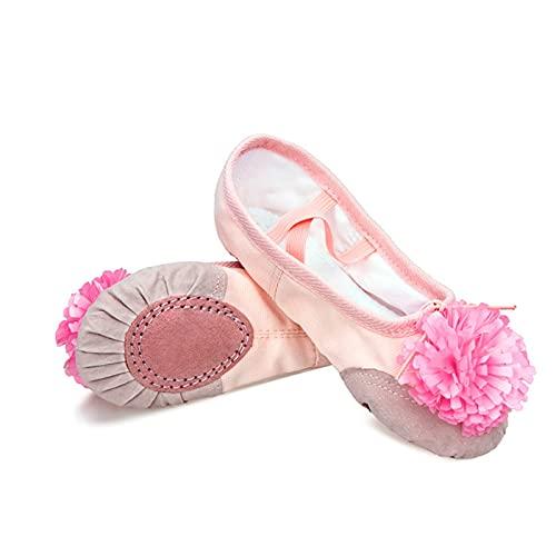 ZBYD Zapatos de Baile de Ballet Rosa Chicas niños niños niños Ballet Zapatillas de Cuero splace Suave Suela de Yoga Gimnasia Zapatos de Baile con Flor 509 (Color : Beige Pink Flower, Shoe Size : 39)