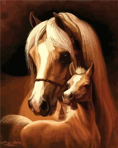 DIY pintura por números lienzo animal pintura acrílica decoración para colorear por números kits de caballos adultos regalo pintado a mano A15 40x50cm