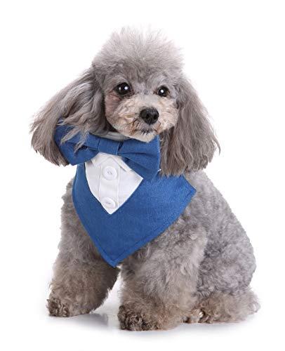 FishBabe Haustier-Hochzeitsanzug, Kostüm, Bandana-Kragen, für Hunde und Katzen, mit Schleife, Hemdkragen, Schal für kleine Tiere