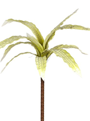 Ixia Elemento Decorativo para Planta Verde