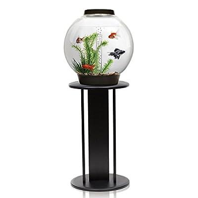 biOrb Classic 30L Aquarium in Black with MCR LED Lighting & Black Stand by BiOrb