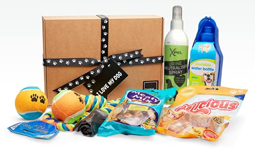 'I Love My Dog' Gift Hamper Selection Box for Dogs and Dog Lovers. Portable Water Bottle & Bowl, Urine Neutraliser Spray, Rope Tug Toy, Ball, 2 x Dog Treats & Poop Bags. (Green/Blue)