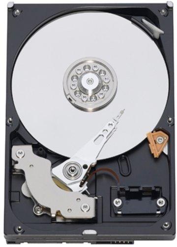 WESTERN DIGITAL 3.5インチ内蔵HDD 1TB IntelliSeek 32MB SATA 3.5inch(GP333) WD10EADS。