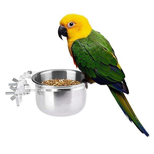 Hypeety Pet Bird Futternapf und Trinken Aufhängen Tasse Edelstahl Coop Aufhänger Tasse für Parrot Käfig Wellensittich