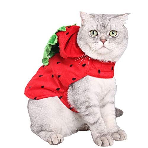 Yiwa kostuum in aardbeivorm, rood
