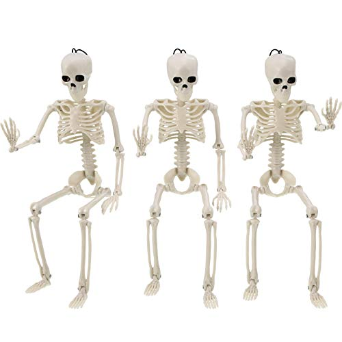 3 Pieces Halloween Skeleton Full Body Skeleton Model Plastic Skeleton Figure Movable Joints Skeleton for Halloween Decoration