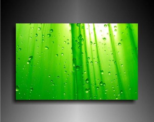 Fotoleinwand24 Bild auf Leinwand - Landschaft Tau auf Gras AA0597 / Bunt / 150x100 cm