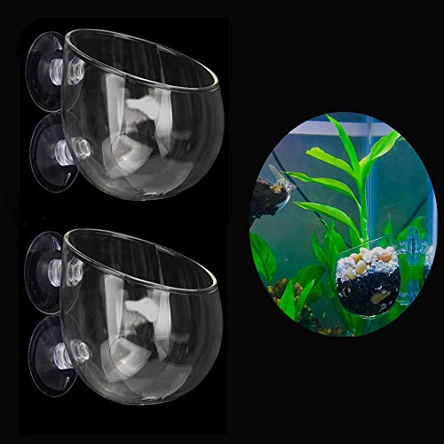 Ailindany 2PCS Crystal Glass Aquatic Plant Cup Pot Holder with Suction Cups for Fish Tank Aquarium Decor