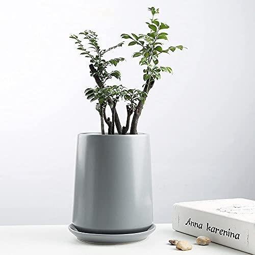 TREEECFCST Macetas De Ceramica Macetero Macetero Simple Maceta de jardín de cerámica de Estilo Europeo con Agujero y Bandeja para Plantas de Interior 915(Color:Gray)