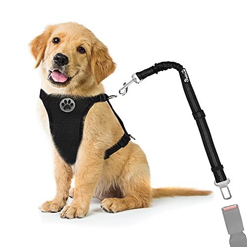 Nasjac Hund Auto Geschirr Sicherheitsgurt-Set, Pet Vest Harness mit Sicherheitsgurt, atmungsaktives Material und Verstellbarer elastischer Gurt für Hunde, die im Freien Laufen (Schwarz Mesh, M)