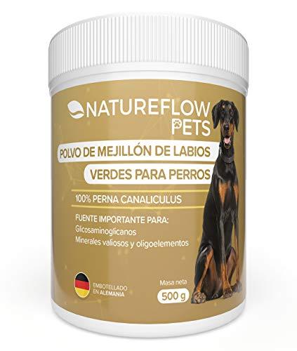 Polvo de mejillón de Labios Verdes para Perros - 500g extracto de mejillón de Labios Verdes - Extracto Natural de mejillón Labios Verdes con Alta aceptación de Todos los Perros