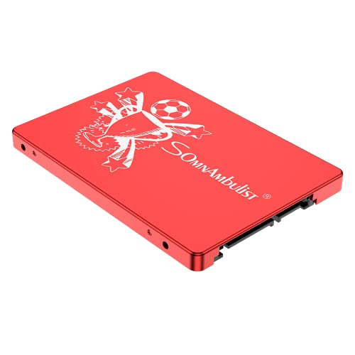 Somnambulist SSD 2.5インチ SATA3/SATA2 120GB 240GB 480GB 960GB 内蔵型ソリッドステートドライブ HDD 60GB 480GB 960GB 2TB (レッドトロフィー 60GB)