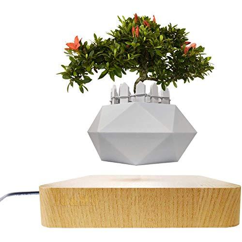 Jasis Woo Creative Levitating Air Bonsai Pot Rotation Planters Magnetic Levitation...