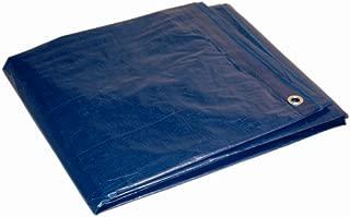 12x30 Multi-Purpose Blue Medium Duty DRY TOP Poly Tarp (12'x30')