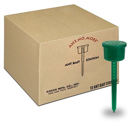 Kness 12 Pack Ant Bait Stations, Box of 12