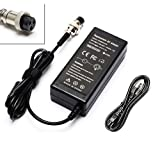 LJO-EEIH 24V 1.5A 36W Electric Scooter Battery Charger for Razor e125 e150 E175, E225S,E325S, E500, PR200 Pocket Mod, Sports Mod and Dirt Quad 3-Prong Inline