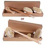 karrychen 4pcs Dry Body Face Brushing Set Natural Bristle Shower Brush Exfoliating Brush
