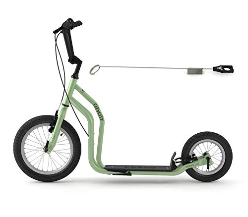Yedoo City Scooter RunRun