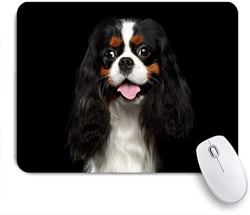 COFEIYISI Tappetino per Mouse,Cane Cavalier King Charles Spaniel Premium.JPEG,Superficie Liscia in Gomma Antiscivolo Mouse Pad con Design per i Giocatori e Ufficio Lavoro