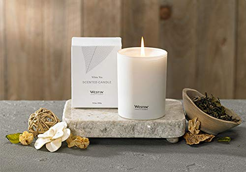 Westin White Tea Candle - Hand-Poured, Soy Candle with Signature White Tea Scent -12.5 oz.