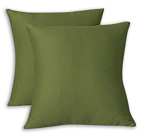 FARFALLAROSSA Copricuscini Fodere per Cuscini Quadrate, Impermeabile e Antimacchia, Decorazione per Divano Casa, 55x55 cm Verde Pacco da 2