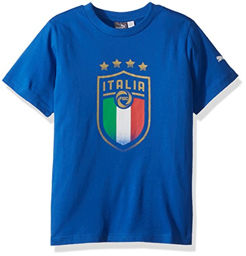 PUMA FIGC Italia FANWEAR Badge tee JR Camiseta, Equipo Power Blue, M para Hombre