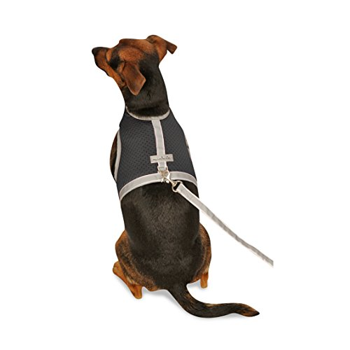My Canine Kids Athletic Mesh Dog Vest Harness_Black_Teacup 3 - from The Inventor of Cloak & Dawggie