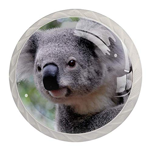 Schrankgriffe Koala (2) Möbelknöpfe Kinderzimmer Set Schubladenknöpfe Möbelknäufe Kinderzimmer 4er Set 3.5x2.8cm