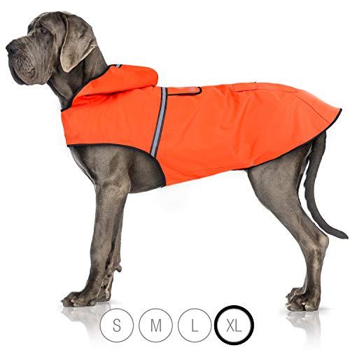 Bella & Balu Hunderegenmantel – Wasserdichter Hundemantel mit Kapuze und Reflektoren für trockene, sichere Gassigänge, den Hundespielplatz und den Urlaub mit Hund (XL | Orange)