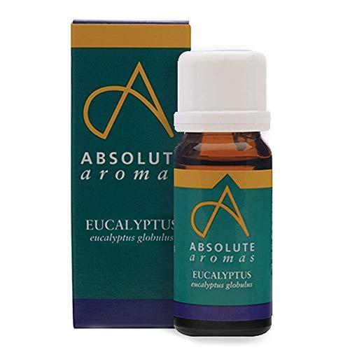 Absolute Aromas Eukalyptus Globulus ätherisches Öl 10ml - 100% rein, natürlich, unverdünnt und tierversuchsfrei - Zur Anwendung in Duftlampen und Aromatherapiemischungen