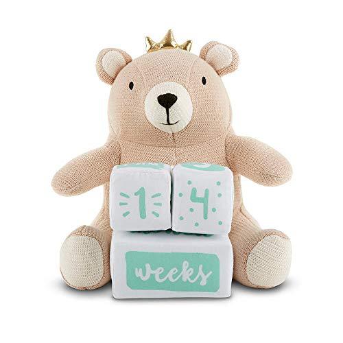 Baby Aspen My First Milestone Brown Bear Plush Plus Baby Age Blocks, tan/Aqua/White