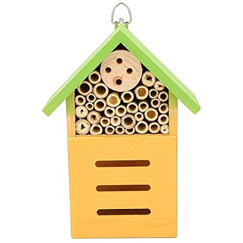 SALALIS Casa delle api, casa delle api in Legno Multiuso Non tossica per osservare Gli Animali