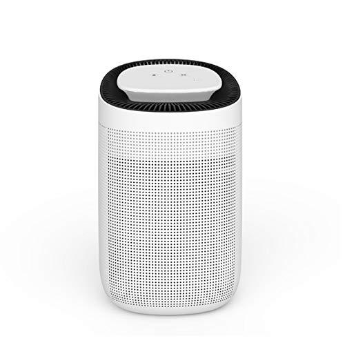 Inspire for homes - Deshumidificador y purificador de Aire 2 en 1, plástico, Blanco, 31,5 cm