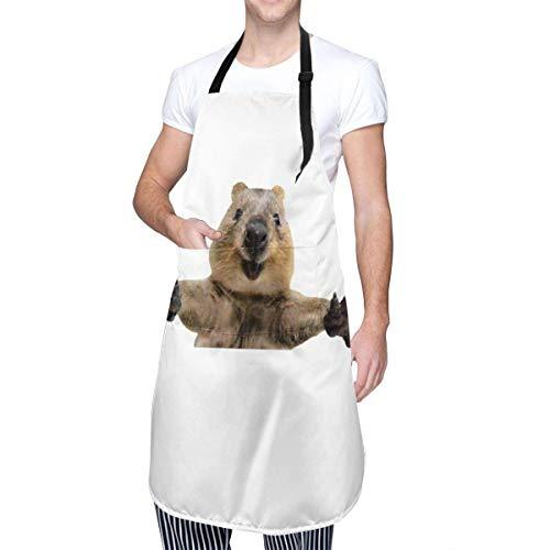 Happy Quokka Begrüßung Hug Cooking Schürze mit Tasche für Männer Frauen
