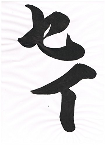 The Kanji Characters read as -Sei- japanise calligraphy (Wonder Style) (Japanese Edition)