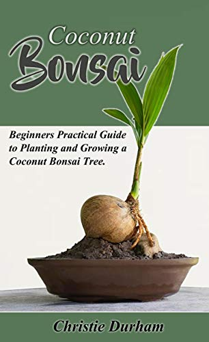 Coconut Bonsai Beginners Practical Guide To Growing And Planting A Coconut Bonsai Tree Kindle Edition By Durham Christie Crafts Hobbies Home Kindle Ebooks Amazon Com
