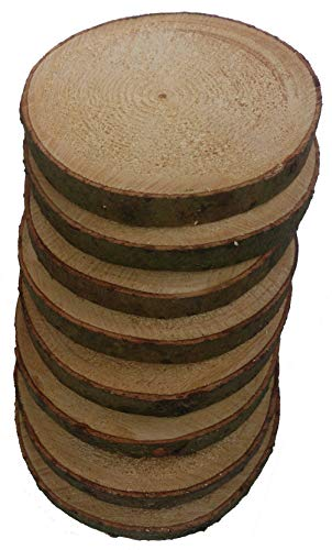 Mercarimus 8 Stück Holzscheiben 17-20 cm Baumscheiben mit Rinde Astscheiben Deko Basteln Floristik Hochzeit