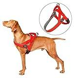 pettom harnais chien pour Éducation harnais anti traction veste chien rembourré avec poignée Élastique(rouge s)