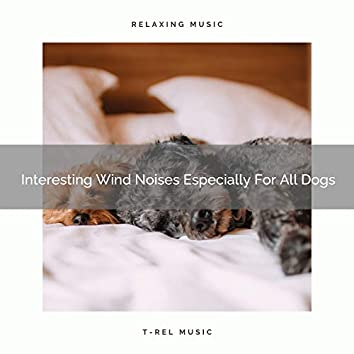 Interesting Wind Noises Especially For All Dogs