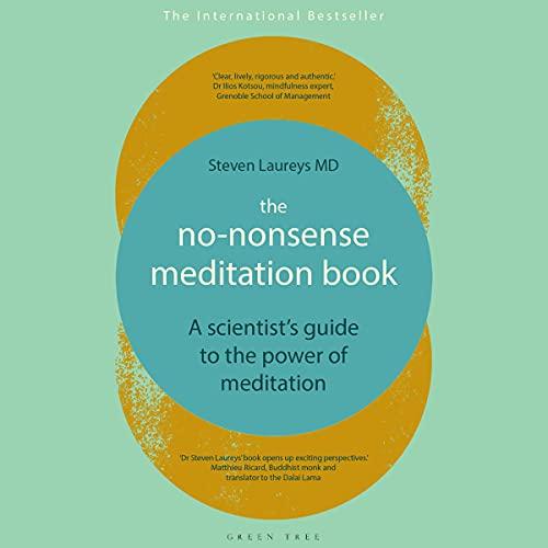 The No-Nonsense Meditation Book cover art