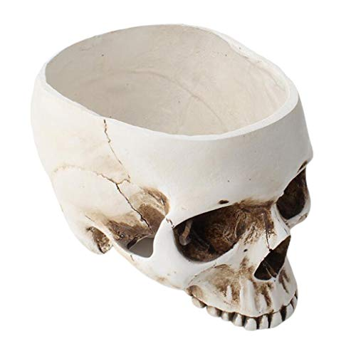 LoveinDIY White Resin Skull Shaped Head Design Flower Pot Planter Container Decoration Large Flowerpot Set Props for Home Office Desk Decoration