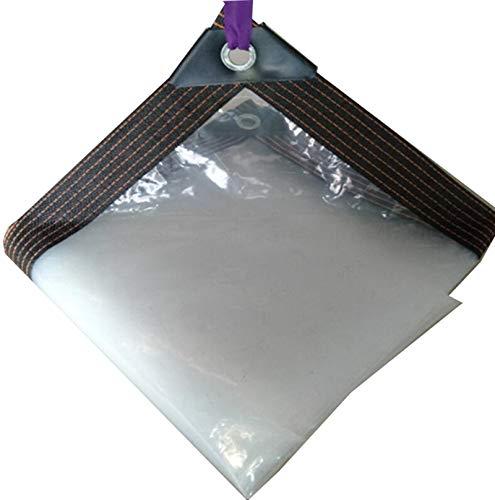 QI-CHE-YI Tarpaulina, Lona Transparente con Perforaciones, con Cuerda,3×8M